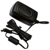 2 Amp 12V DC